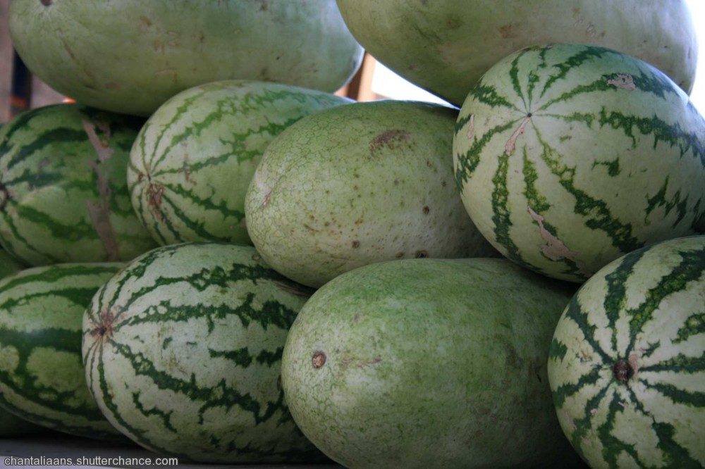 photoblog image Water Melon