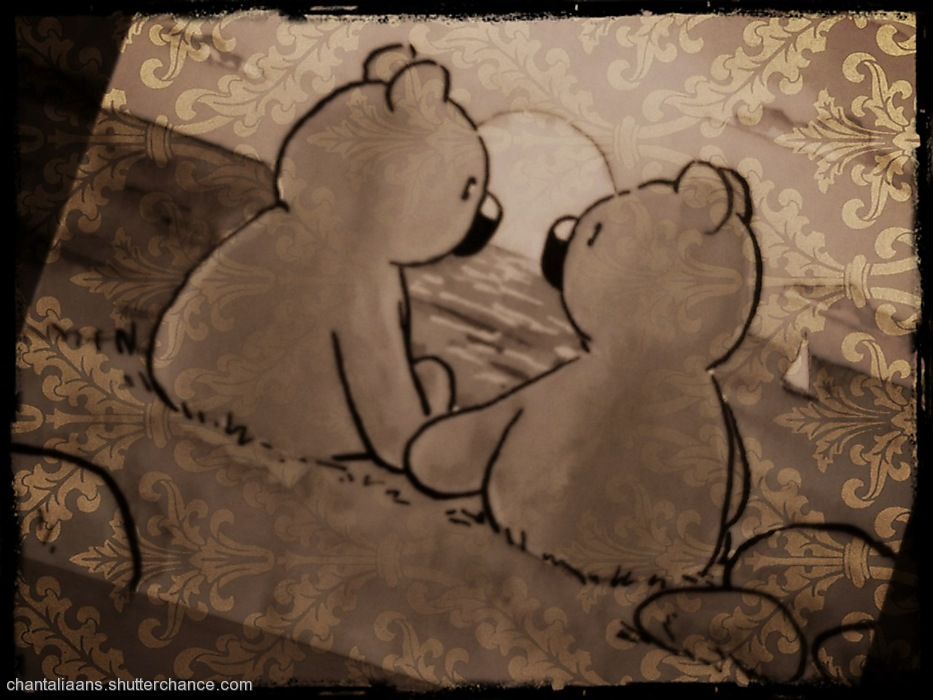 photoblog image Bear Love 4/6